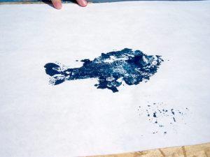 fish print4