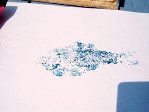 fish print5